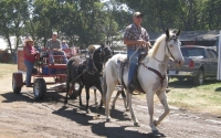 Horse drawn wagon and out rider