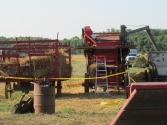 pv2013-200-img_1298_oats_side_of_horse_threshing
