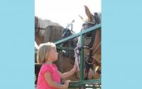 pv2013-220-img_1414_4th_gen_public_visiting_horses