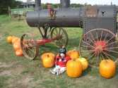 10/03/15 1PM Little one with pumpkins