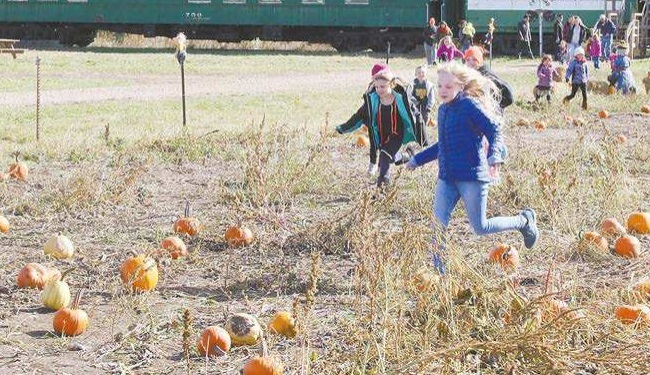 Pumpkin Train 2018
