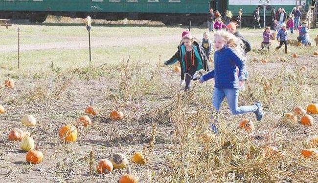 Pumpkin Train 2018